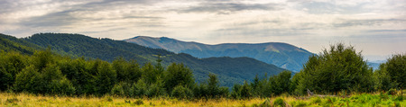 panorama of Carpathian mountains in summer. beautiful landscape with forested hills and Apetska mountain in the distance.