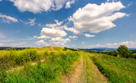 beautiful rural landscape in mountains. lovely summer scenery. road through agricultural field under the blue sky with fluffy clouds Stock Photo - 104417809