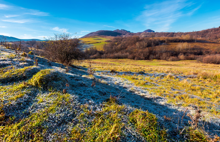 morning hoarfrost on the grassy meadow in mountains. beautiful autumnal landscape with naked forest and hill in the distance. Stock Photo