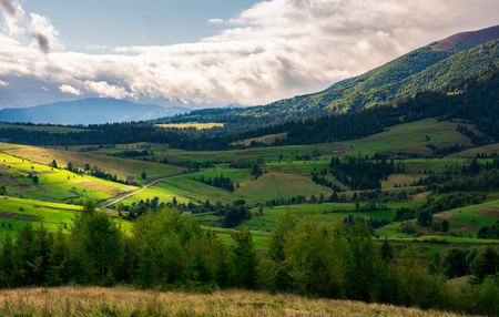 beautiful mountainous countryside on a cloudy day. wonderful landscape in early autumn. row of trees on a grassy meadow. forested hill in the distance. road across the rural fields of Podobovets Stock Photo - 104417815