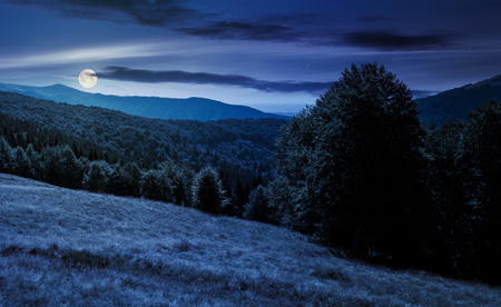 Meadow on the forested hill in summer mountain landscape at night in full moon light. beautiful nature scenery on high altitude Stock Photo