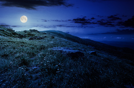 rocks on grassy hillside of the mountain at night in full moon light. yellow dandelions along the path uphill in to the sky with fluffy clouds. beautiful summer background