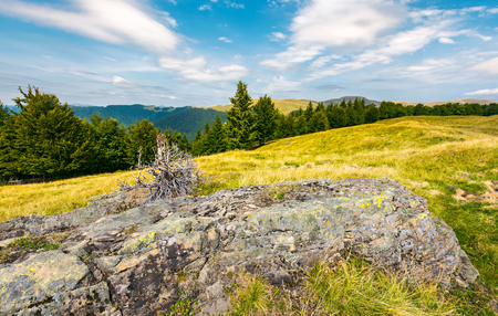 lovely summer landscape of Svydovets. huge boulder on a grassy meadow. spruce and beech forest on a hillside. wide ridge in the distance under the beautiful cloud Stock Photo