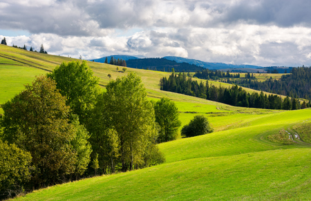 beautiful mountainous countryside. grassy rolling hills with trees. mountain ridge in the distance. wonderful early autumn weather Stock Photo