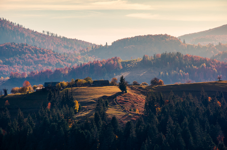 village on forested rolling hill in haze. beautiful countryside scenery in mountain of Romania at sunrise Stock Photo
