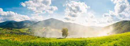 panorama de la belle campagne montagneuse. arbre sur le flanc de la colline en fumée du feu dans la vallée. magnifique paysage d'automne lumineux avec un magnifique paysage de nuages