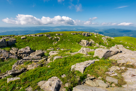 fresh summer landscape in mountains. beautiful location of carpathian mountain. explore the world concept Stock Photo