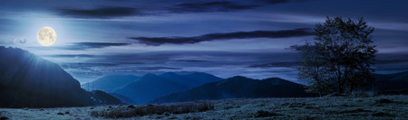 panorama of a mountainous landscape. trees on the grassy meadow. power line tower in the distance. beautiful autumn night in full moon light Stock Photo