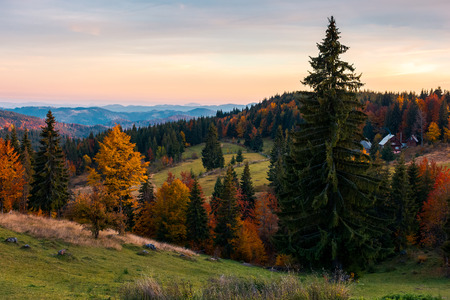 reddish dawn in mountains. beautiful autumn countryside. village near the forest in the distance Stock Photo