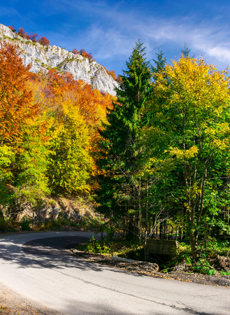 country road through forest in autumn. high cliff on top of a mountain Stock Photo