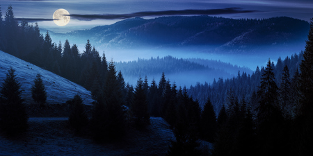 ocean of fog in forested valley at night in full moon light. gorgeous panoramic landscape in autumn mountains. spruce trees lit by rising sun Stock Photo
