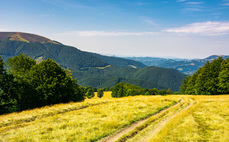 Country road down the alpine meadow . beautiful summer landscape in mountains Stock Photo