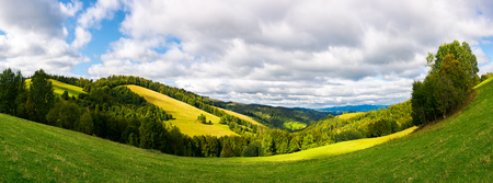 panoramic landscape in mountain.  forested hills with meadows on a sunny day. cloudy sky Stock Photo