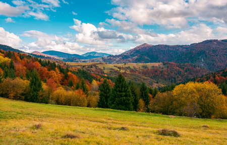 wonderful autumn scenery in mountains. beautiful countryside with forested hills and gorgeous afternoon sky with clouds Stock Photo