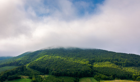 cloud above the forested hill. beautiful countryside scenery