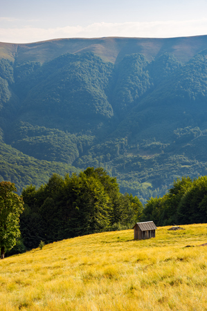 hut on the grassy hill near the beech forest. beautiful scenery in mountains. warm and sunny afternoon in summer Stock Photo