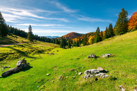 autumn landscape of Apuseni National park. beautiful scenery with fall colored forest and distant mountains. wonderful destination of Romania Stock Photo - 107270596