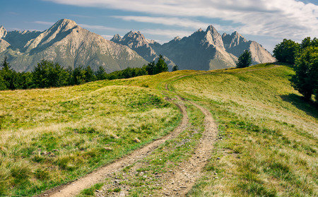 composite landscape with Hight Tatra mountains. country road in to the distant forest along the grassy meadow. lovely summer scenery Stock Photo - 107270604