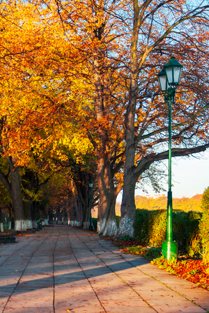green city light on autumn embankment. beautiful urban scenery with colorful foliage on trees in the morning light Stock Photo