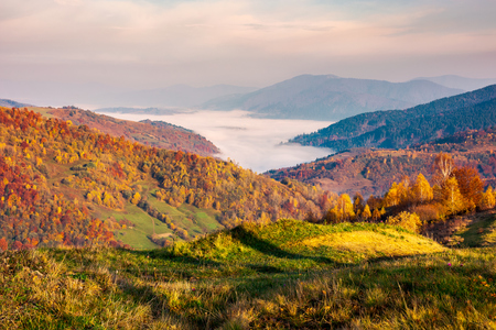 beautiful landscape at foggy autumn sunrise. red foliage on forested hills. cloud inversion in distant valley. beautiful season colors Stock Photo - 108409374