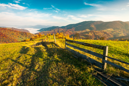 beautiful countryside at foggy autumn sunrise. wooden fence across the rural alpine meadow red foliage on forested hills. cloud inversion in distant valley. beautiful season colors