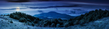 panorama of mountainous countryside. forest on a grassy meadow. high mountain in the distance. wonderful early autumn landscape at night in full moon light