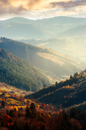 beautiful afternoon in mountains. lovely autumn weather. nearest forest in colorful foliage. distant mountain in haze. vertical Stock Photo