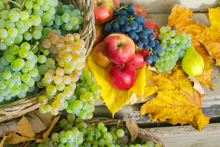autumnal harvest still life with apples, pears, grapes, nuts and berries in foliage on wooden board. horizontal Stock Photo - 108411584