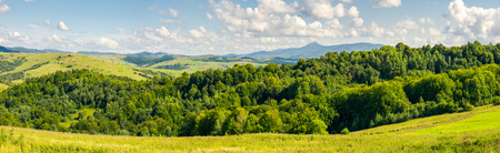 panorama of beautiful autumn countryside. forest behind the meadow. gorgeous cloudscape on the sky above the distant mountain. wonderful warm and sunny september day for a walk or hike Stock Photo