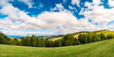 panorama of beautiful autumn countryside. forest row of trees on the grassy meadow. gorgeous sky above the distant rolling hills. wonderful september day for a walk or hike