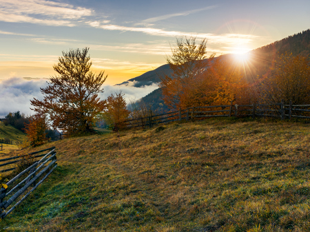 sunrise in carpathian rural area. fence and trees along the hill. cloud inversion in the distant valley Stock Photo