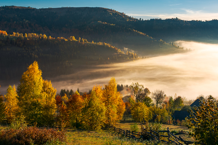 beautiful countryside in autumn at sunrise. trees in colorful foliage. fog in the valley above the village Stock Photo