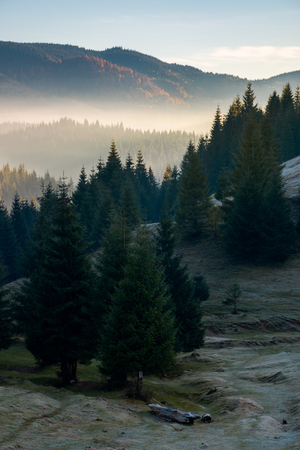 mysterious scenery in mountains. wonderful autumn weather with fog in distant valley Stock Photo