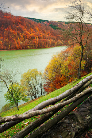 water reservoir on the Tereblya river of Transcarpathia, Ukraine. beautiful autumn scenery with forest in red foliage