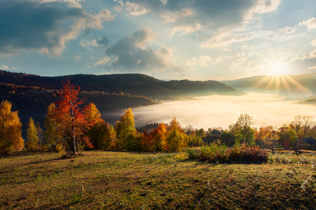 valley full of morning fog in mountainous rural area. gougers countryside with trees in fall colors. Stock Photo - 109273690