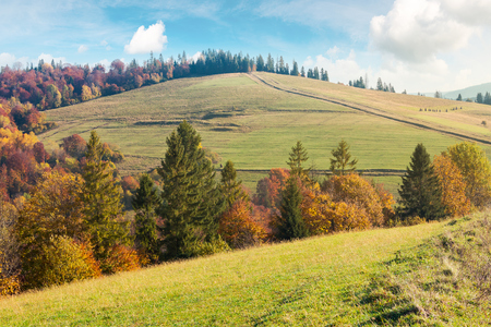 autumn scenery on a bright and warm day. lovely colors. Stock Photo