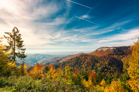 gorgeous autumn landscape in mountains of Romania. cliff above the forest in fall color. beautiful view in evening light with blue sky Stock Photo - 109273744