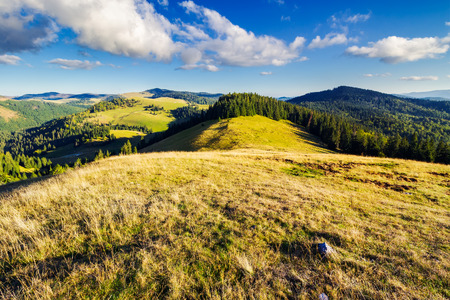 mountainous early autumn landscape in evening light. beautiful view from the grassy meadow on hill. location Romania, Apuseni Natural Park Stock Photo
