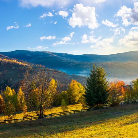 beautiful rural area in mountains. gorgeous autumn sunrise with beautiful light, fluffy clouds on the blue sky and some fog in the valley