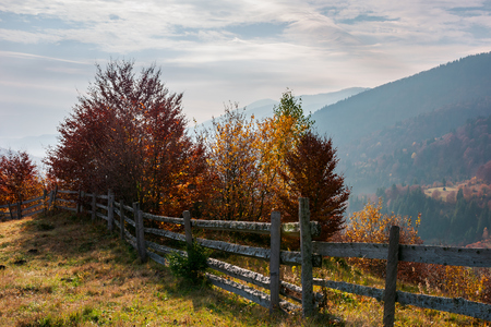 fence along the hill. trees in colorful foliage. lovely autumn scenery in mountains Stock Photo - 109273758