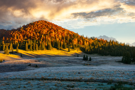 gorgeous sunrise in mountains. forest in fall color. distant mountain lit by rising sun Stock Photo - 109273792