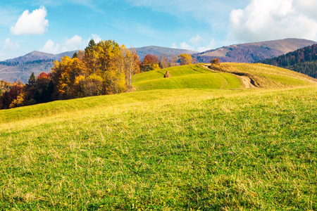 wonderful mountain landscape in fall season. forest with colorful foliage on the grassy hill. alpine ridge in the far distance. warm weather on a sunny day Stock Photo - 109273795