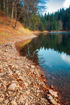 shore of Synevyr lake. fallen autumn foliage on the rocky bank. wooden pier in the distance. beautiful calm evening Stock Photo