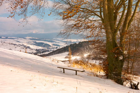 handmade wooden bench under the leafless tree. beautiful view in to the distant mountain. wonderful winter countryside scenery Stock Photo