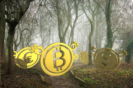 coin bears lost in foggy forest at the bottom of the valley. bearish currency descending trend. creepy deep autumn scenery. horror Halloween trading concept. 3d illustration Imagens - 110747722