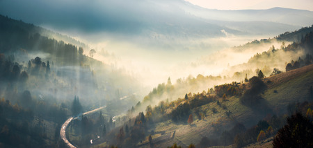 panorama of amazing scenery in mountains at sunrise. glowing fog rise from forest on hills and fall in to the valley. ray of light trace the haze in shade of trees. gorgeous autumn weather