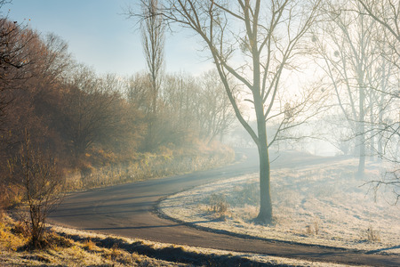 serpentine uphill through forest in morning mist. lovely transportation scenery in november Stock Photo - 111138851