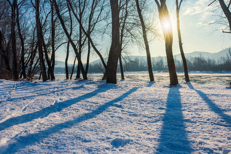 winter scenery near the river. dark naked trees on a snow covered bank Stock Photo
