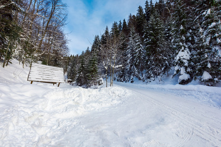 snow covered road winding uphill through forest. wonderful winter adventures Stock Photo
