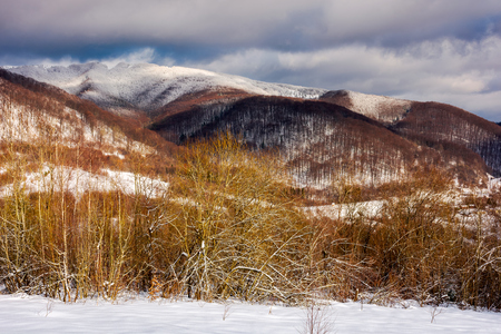 wonderful winter landscape in mountains. sunny day with cloudy sky in the distance above the ridge Stock Photo